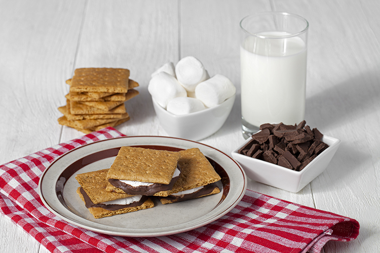 Burn Belly Fat-Ice Cream S'more Sandwiches