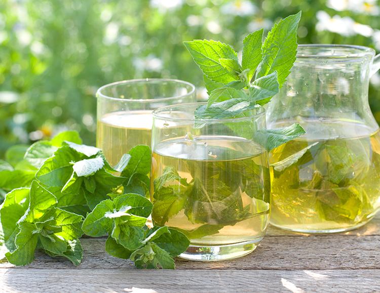 Weight loss tea-Porangabo tea