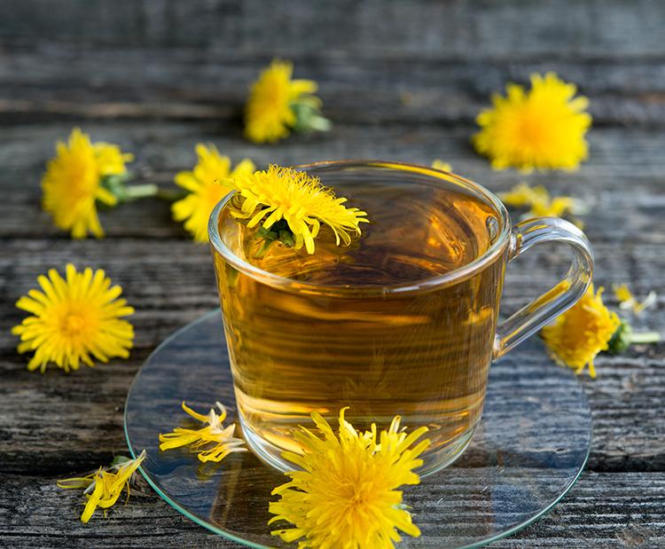 Weight loss tea-Dandelion tea
