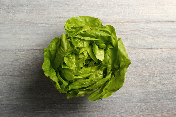 Foods That Reduce Bloating-Lettuce