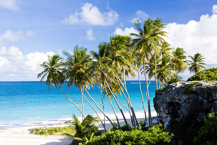 Weight Loss Plan Inspiration-Bottom Bay, Barbados