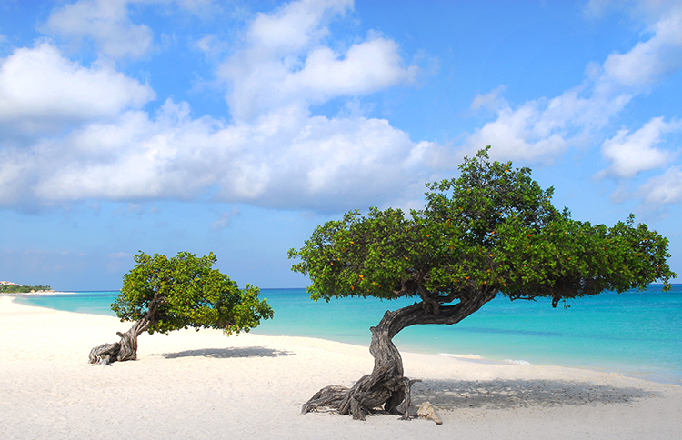 Weight Loss Plan Inspiration-Arashi Beach, Aruba