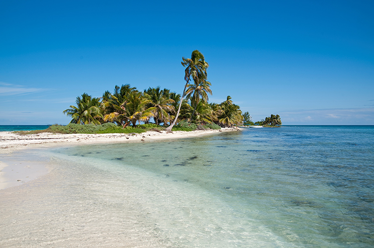 Weight Loss Plan Inspiration-Laughing Bird Caye, Belize