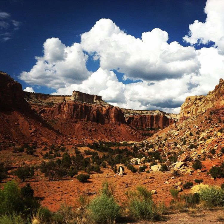 14-Weight Loss Vacations-Ghost Ranch Education and Retreat Center, New Mexico
