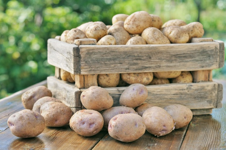 Delicious and Healthy Foods Potatoes